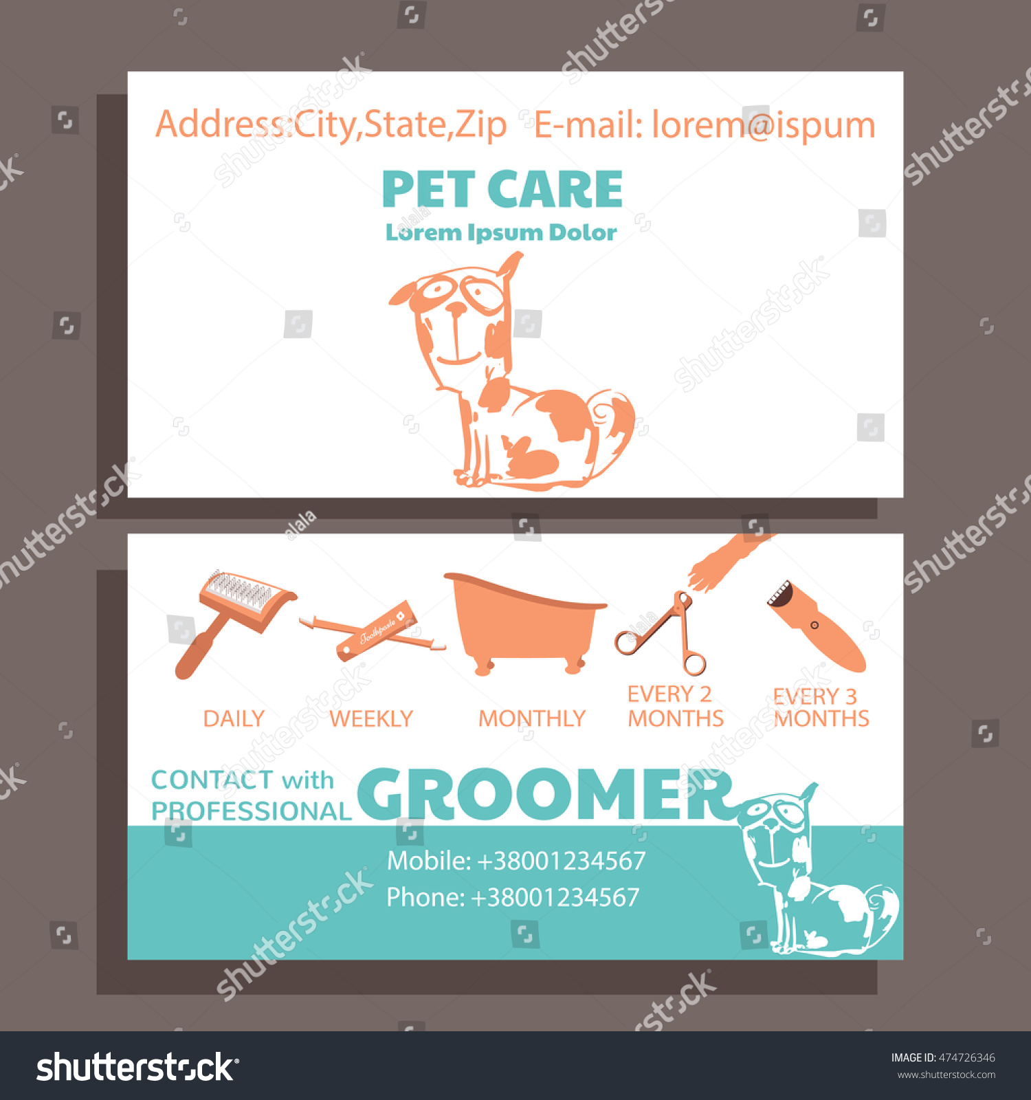 Business Card Service Grooming Pet Informative Stock Vector ...
