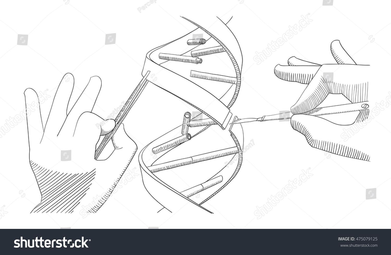 manual genetic engineering manipulation dna bare stock. Black Bedroom Furniture Sets. Home Design Ideas