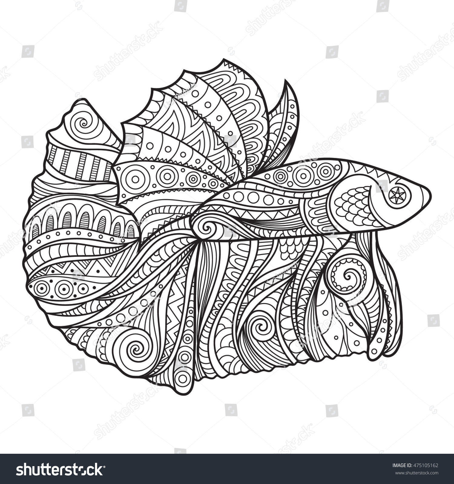 Betta Fish Coloring Pages Printable Betta Best Free