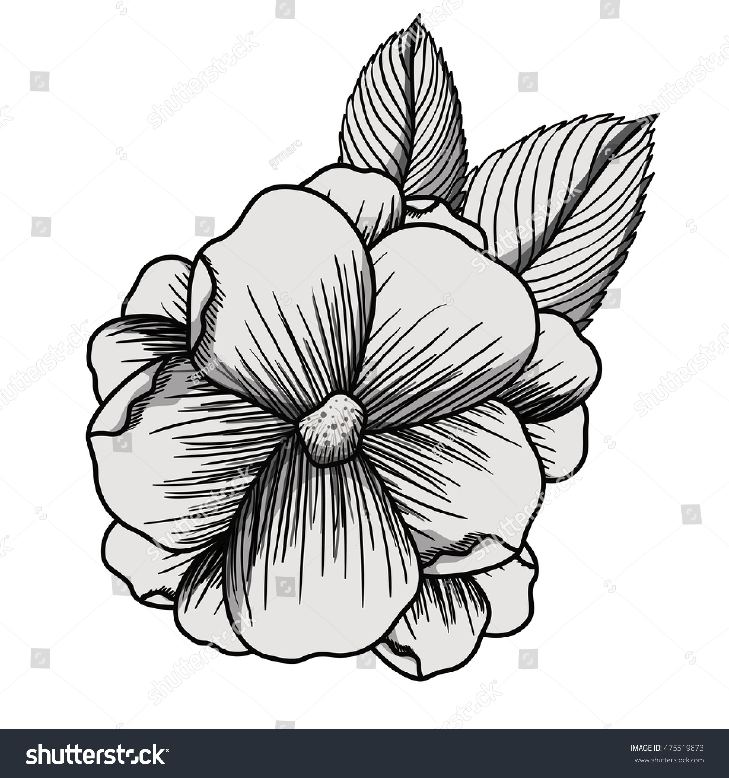 Beautiful Flower Drawing Isolated Vector Illustration Stock Vector