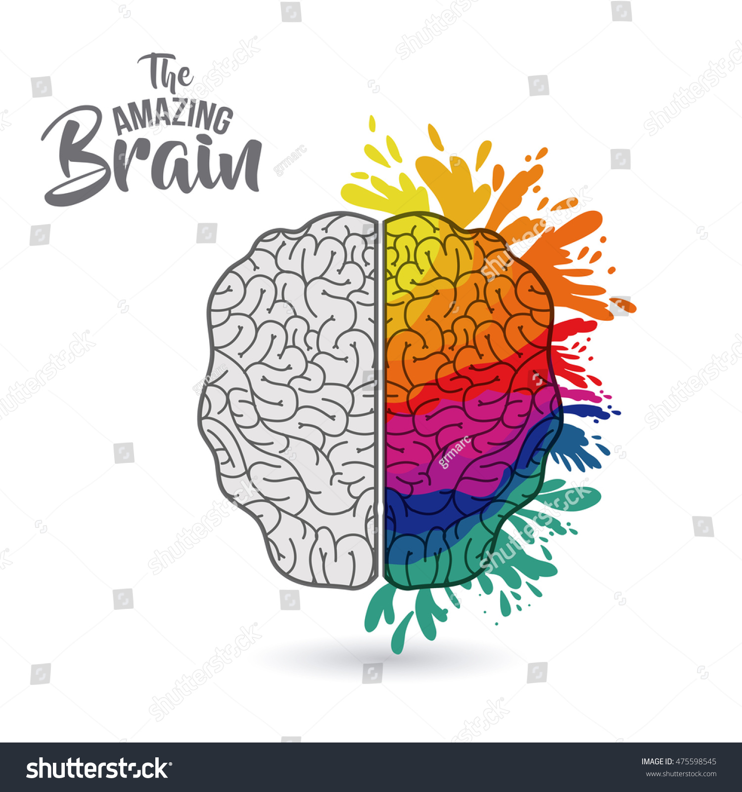 my amazing brain Your amazing brain your your brain contains about 100 billion microscopic cells called neurons—so many it would take you over 3,000 years to count them all.
