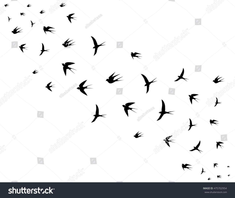 When do birds fly away