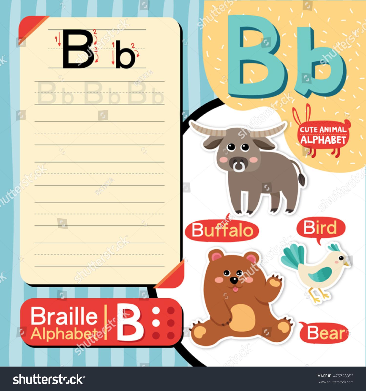 Cute Animal Alphabet Vector B Letter Vocabulary Stock Vector