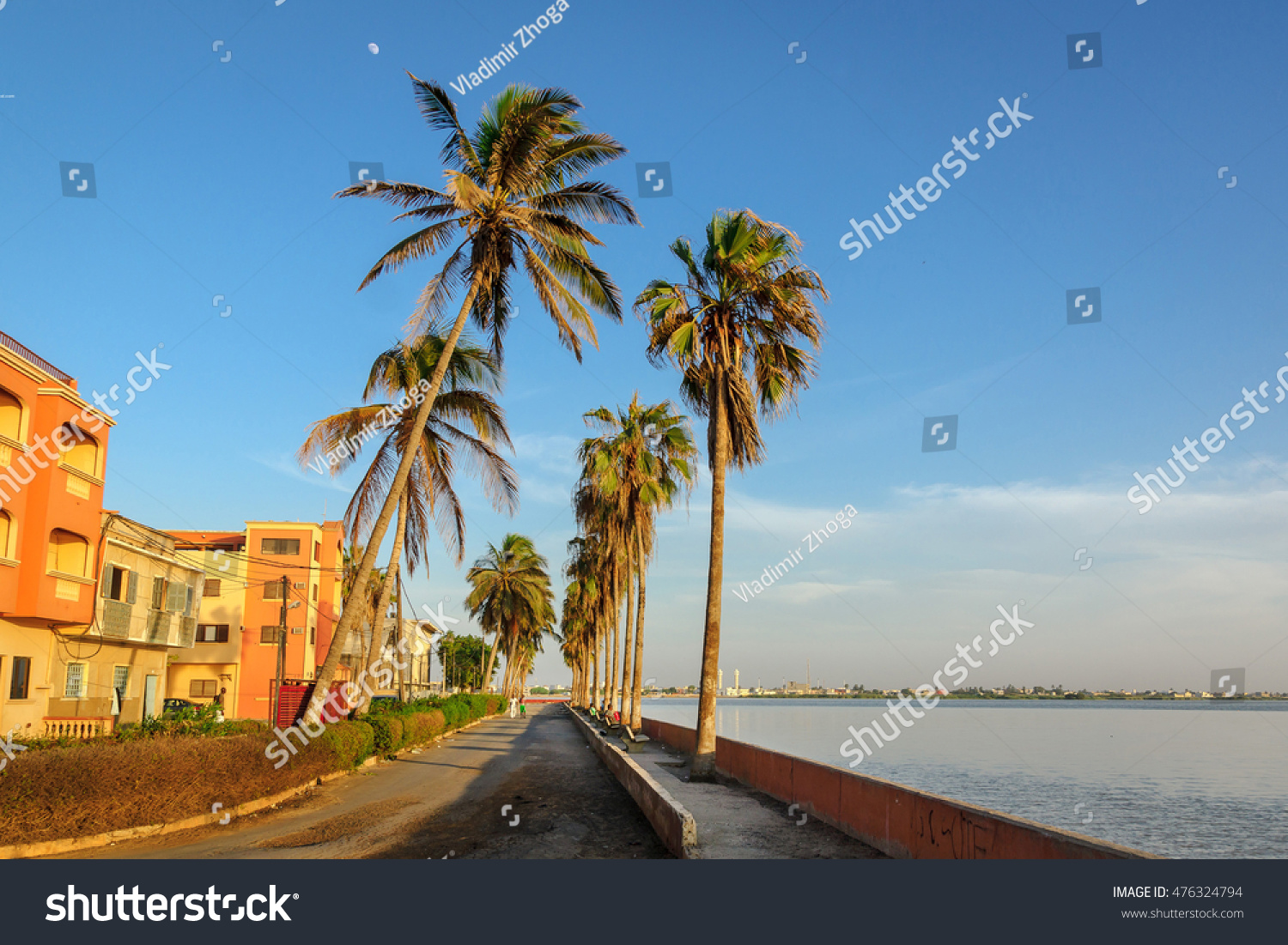 Coastal street with high palm trees during sunset in Saint-Louis, Senegal #476324794