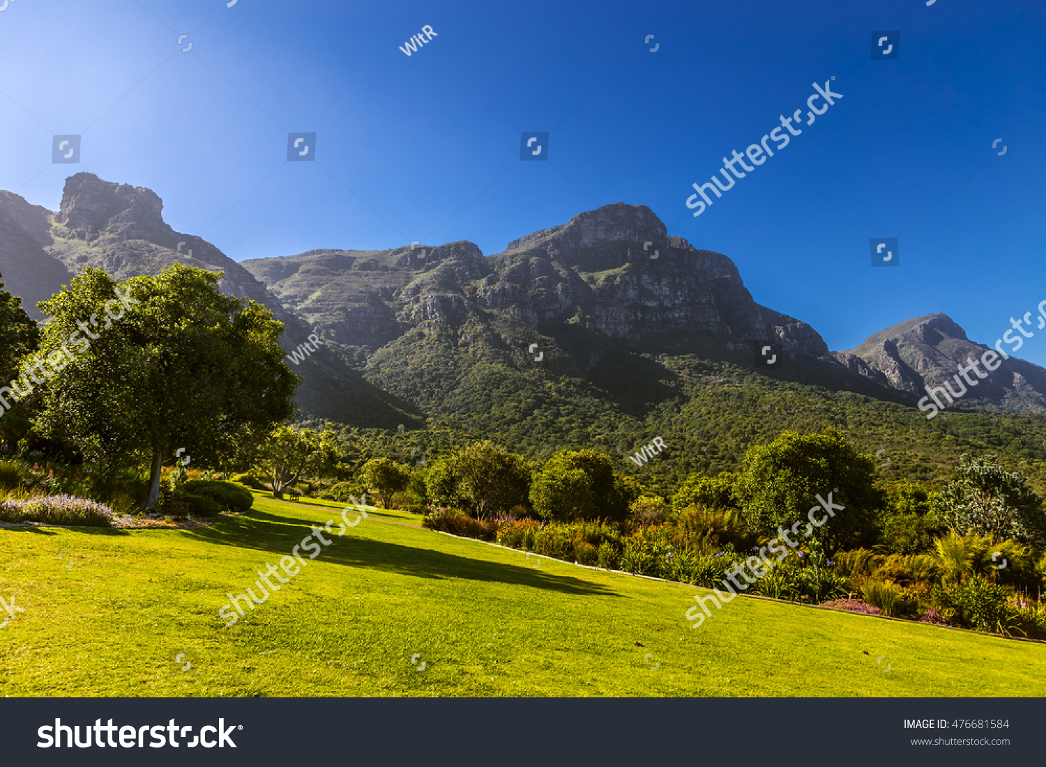 South Africa. Cape Town. Kirstenbosch National Botanical Garden. Panoramic  View Table Mountain Slopes