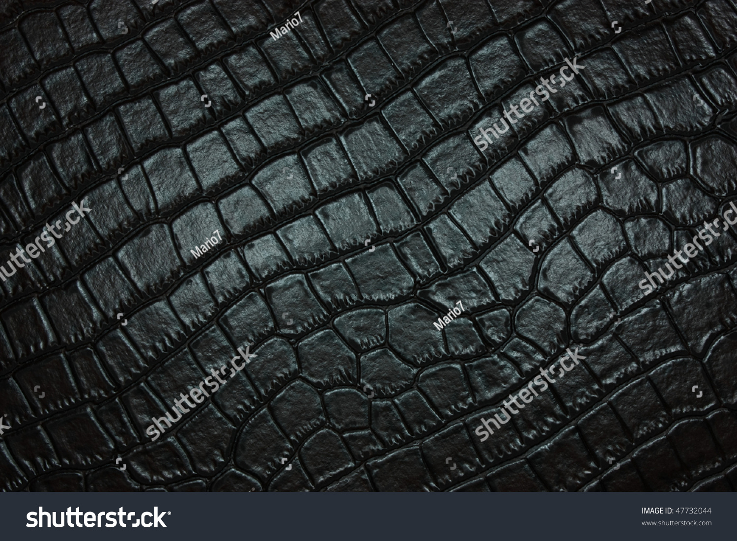 Black Crocodile Leather Texture Stock Photo 47732044 ...