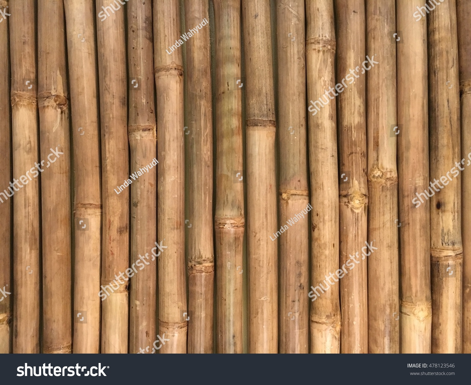 2340ac3792d9 Row Bamboo Stock Photo (Edit Now) 478123546 - Shutterstock