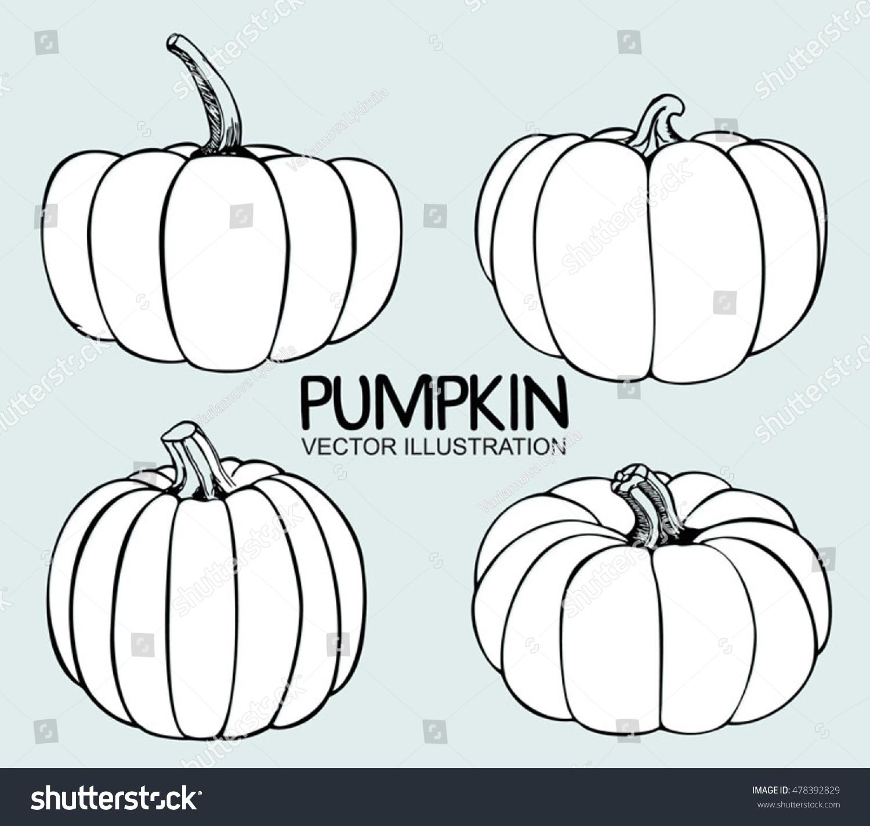 Kitchen Design Inc Vector Single Sketch Pumpkin Doodle Pumpkins Stock Vector