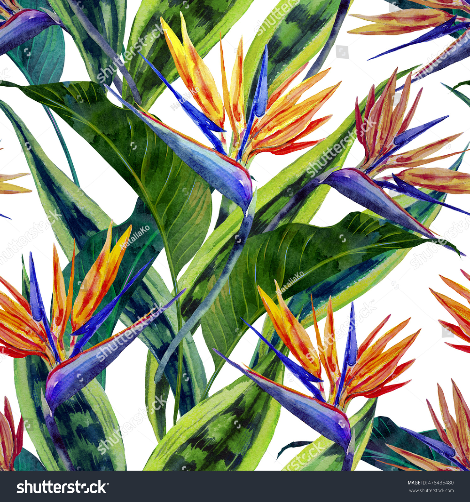 Watercolor tropical flowers jungle leaves hawaiian stock watercolor tropical flowers jungle leaves hawaiian plants bird of paradise flower beautiful buycottarizona