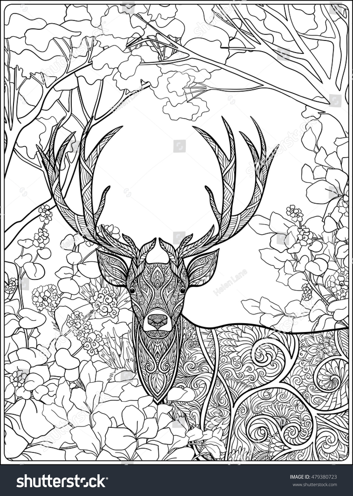 Coloring Page Deer Forest Coloring Book Stock Photo (Photo, Vector ...