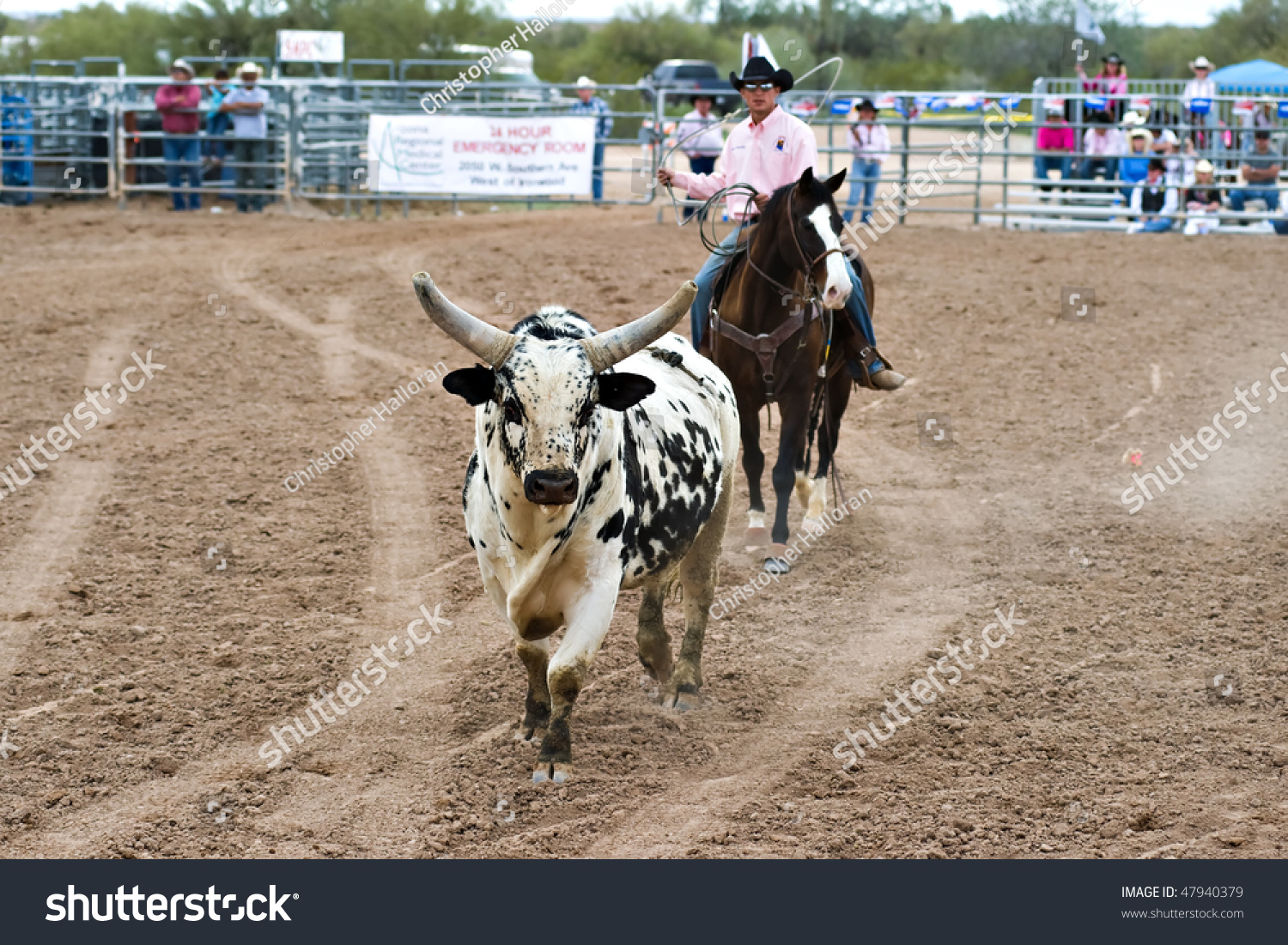 Apache Junction Az February 26 A Rodeo Pick Up Man