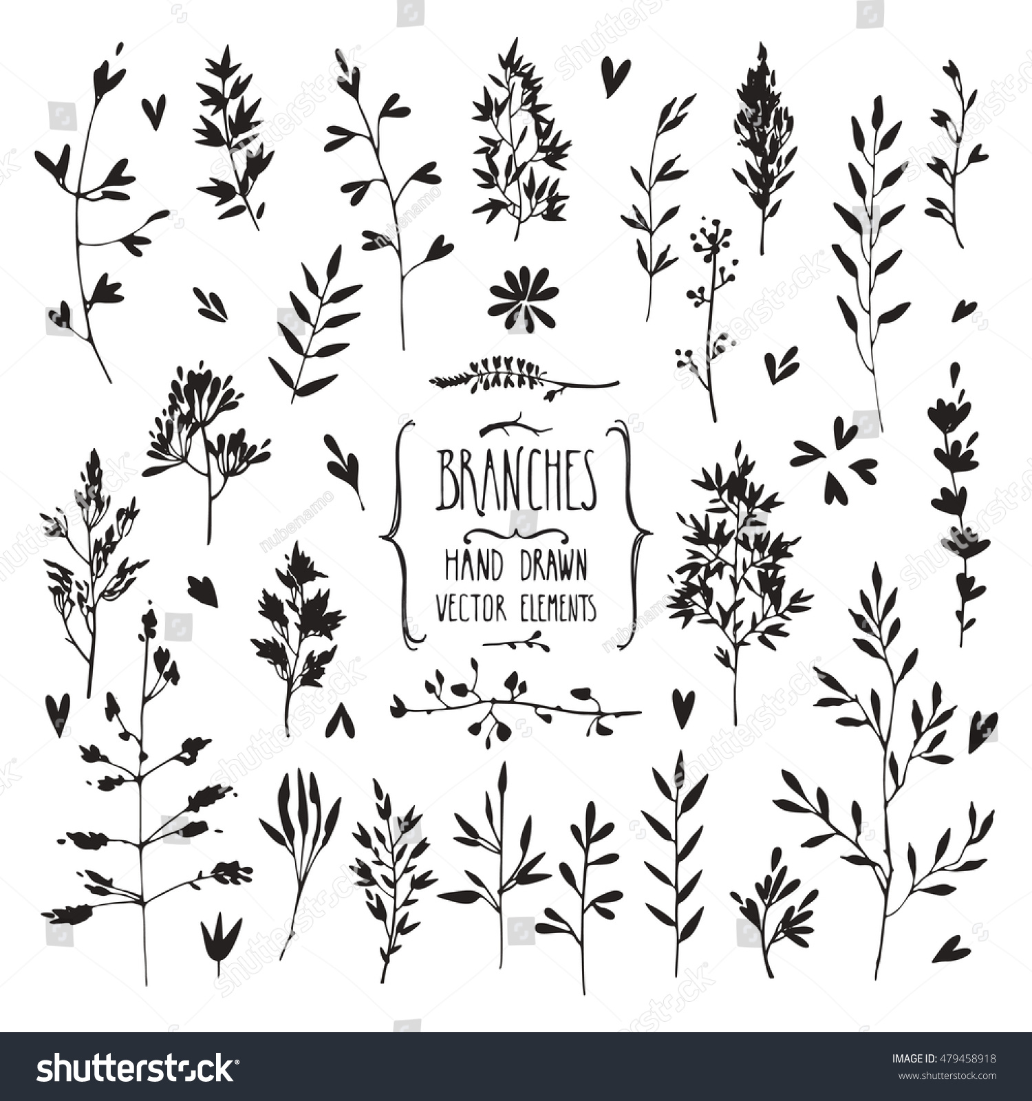 Hand Drawn Collection Of Rustic And Floral Design Elements Plants Flowers Leaves