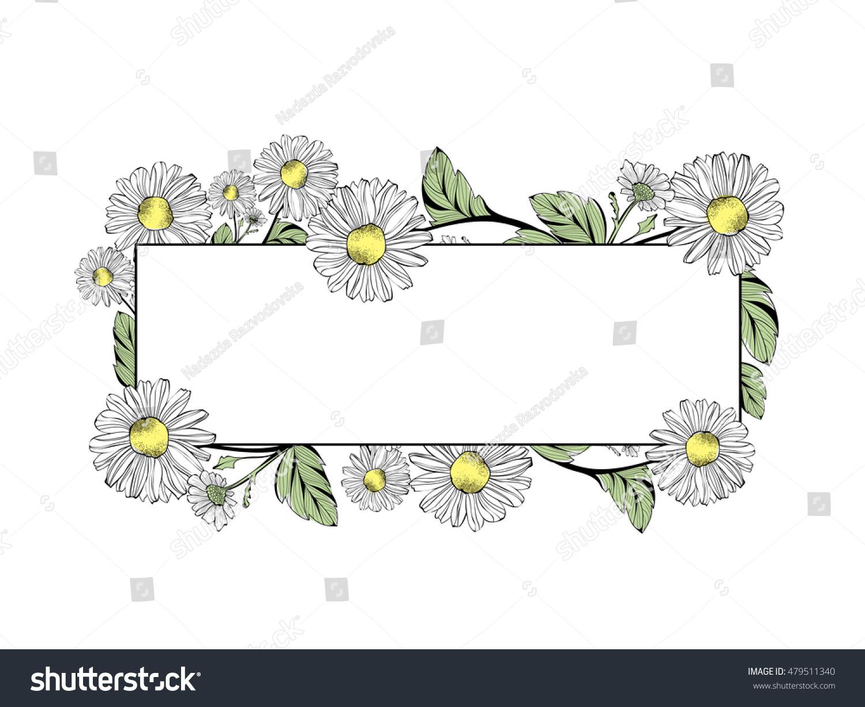 Daisy flower border copyspace over white stock vector 479511340 daisy flower border with copyspace over white izmirmasajfo