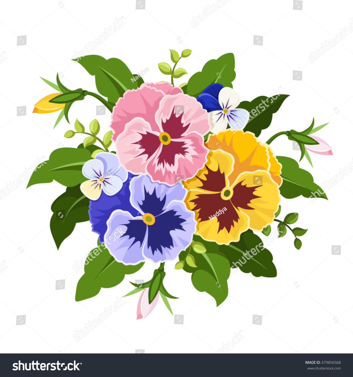 Vector Pink Yellow Purple Pansy Flowers Stock Vector Royalty Free