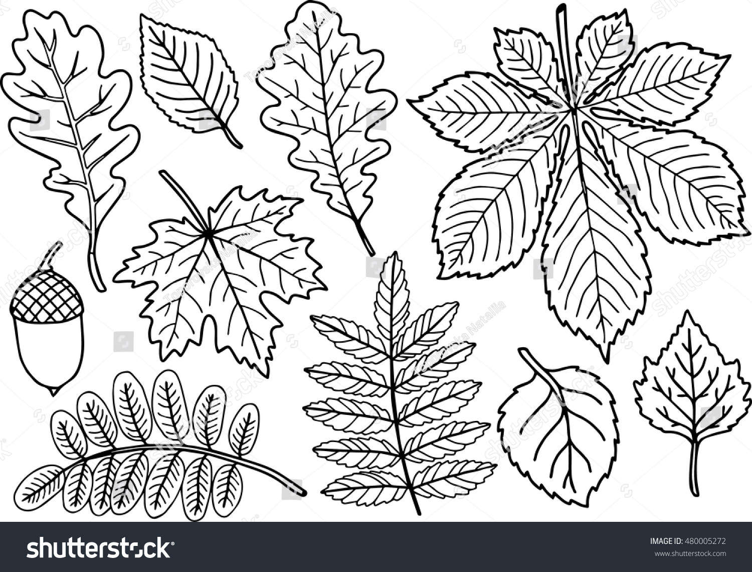 handdrawn vector coloring page black white stock vector 480005272