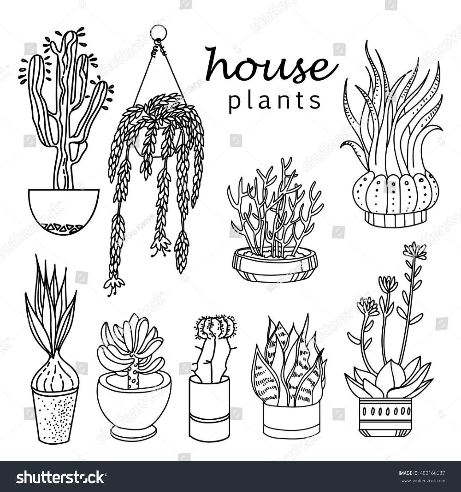 indoor home office plants royalty. illustration of houseplants, indoor and office plants in pot.set house plant isolated home royalty