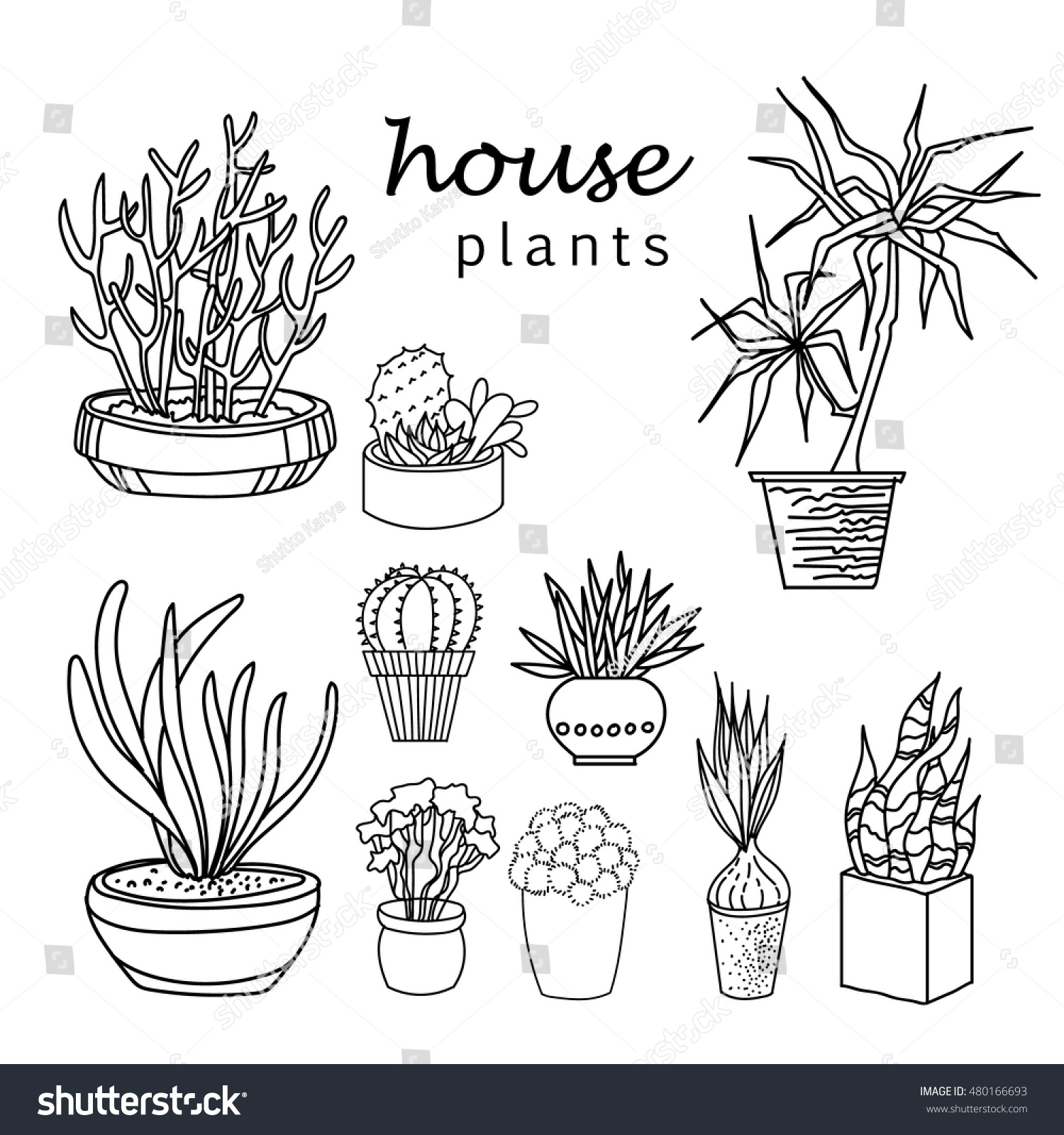 Indoor home office plants royalty Greenhouse Illustration Of Houseplants Indoor And Office Plants In Potset Of House Plant Isolated Avopixcom Royaltyfree Illustration Of Houseplants Indoor Andu2026 480166693