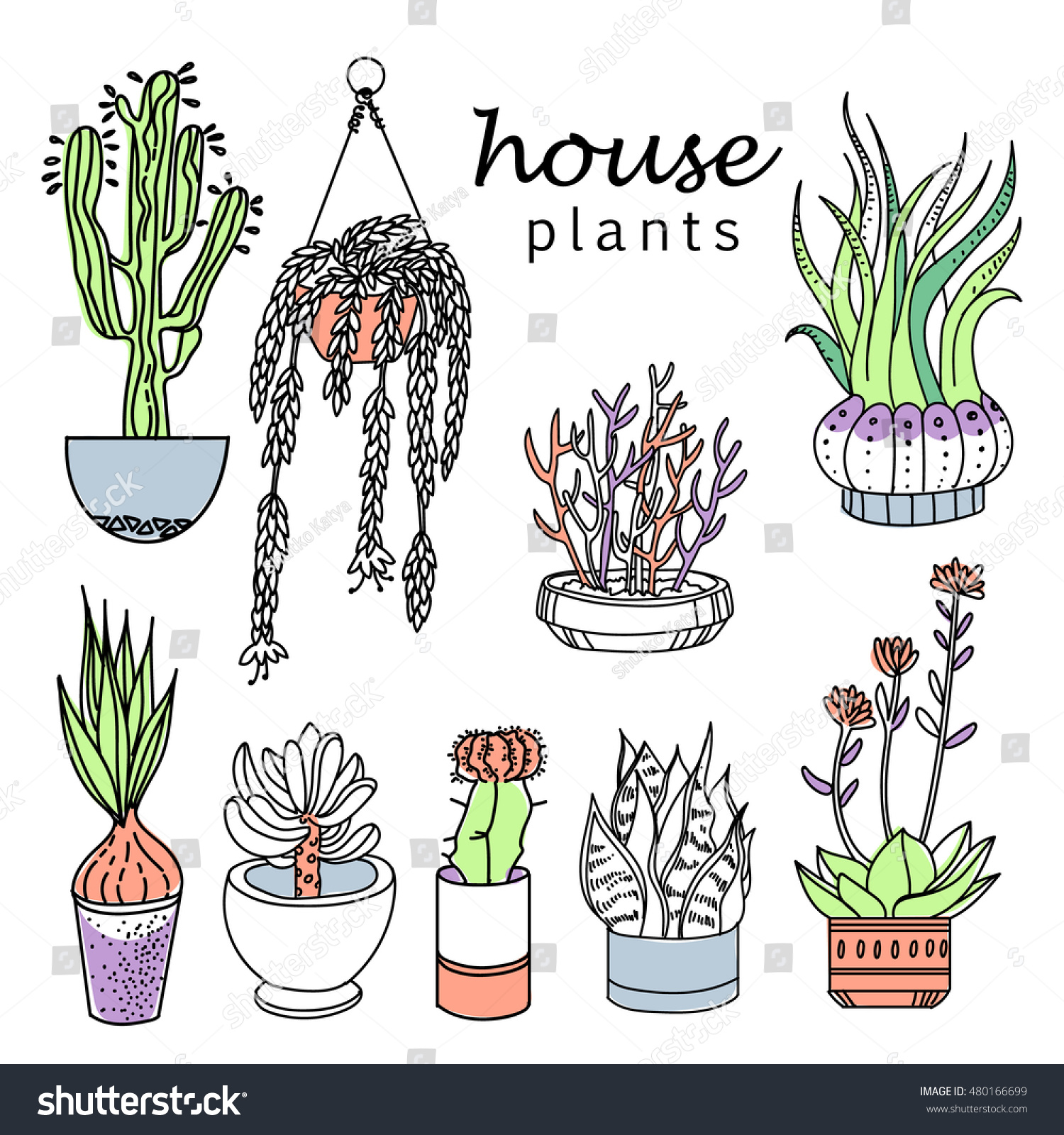 indoor home office plants royalty. Illustration Of Houseplants, Indoor And Office Plants In Pot.Set House Plant Isolated Home Royalty L