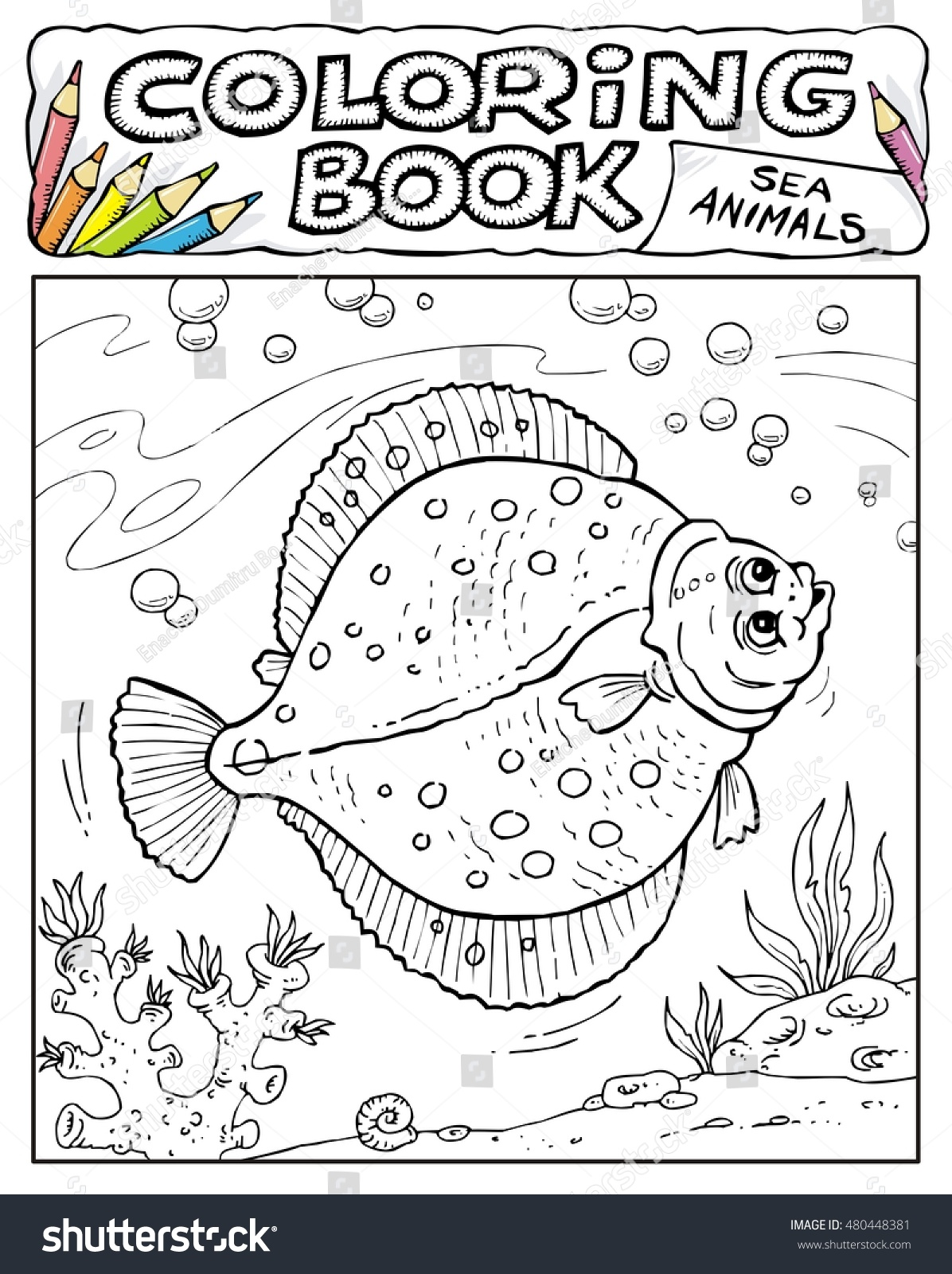 plaice coloring book pages sea animals collection page no 3 4 - Coloring Book Pages Animals