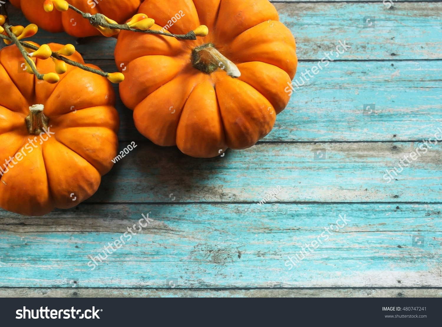 Fall Background With Mini Pumpkins Autumn On Rustic Blue Selective