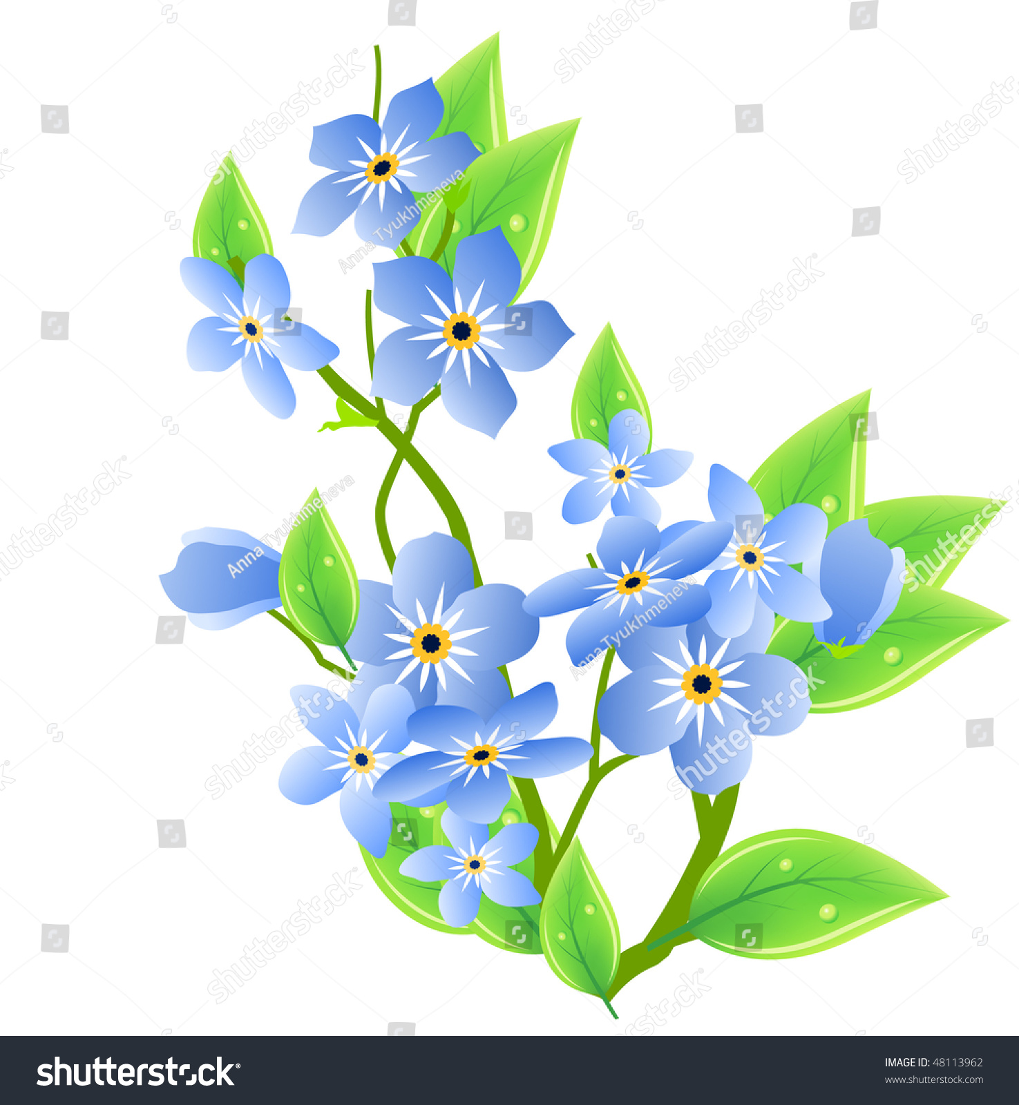 clip art forget me not flower - photo #24