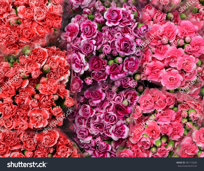Red pink purple flower bouquet background stock photo edit now red pink and purple flower bouquet background izmirmasajfo