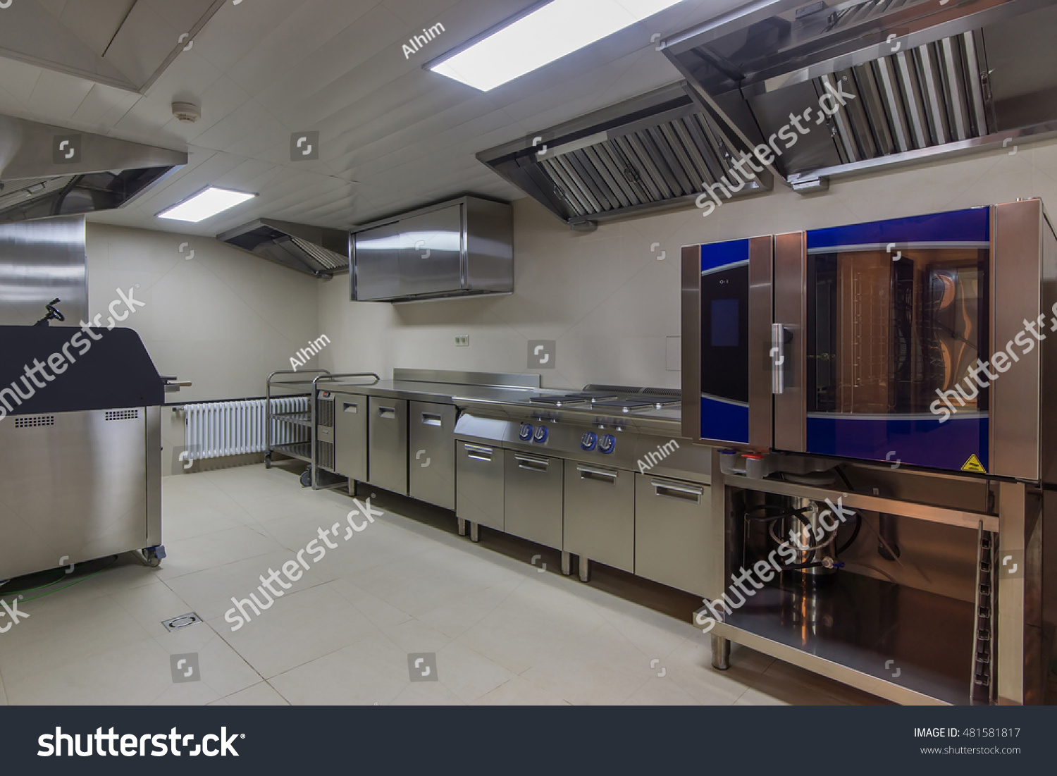 Professional Oven Industrial Kitchen Stock Photo 481581817 ...