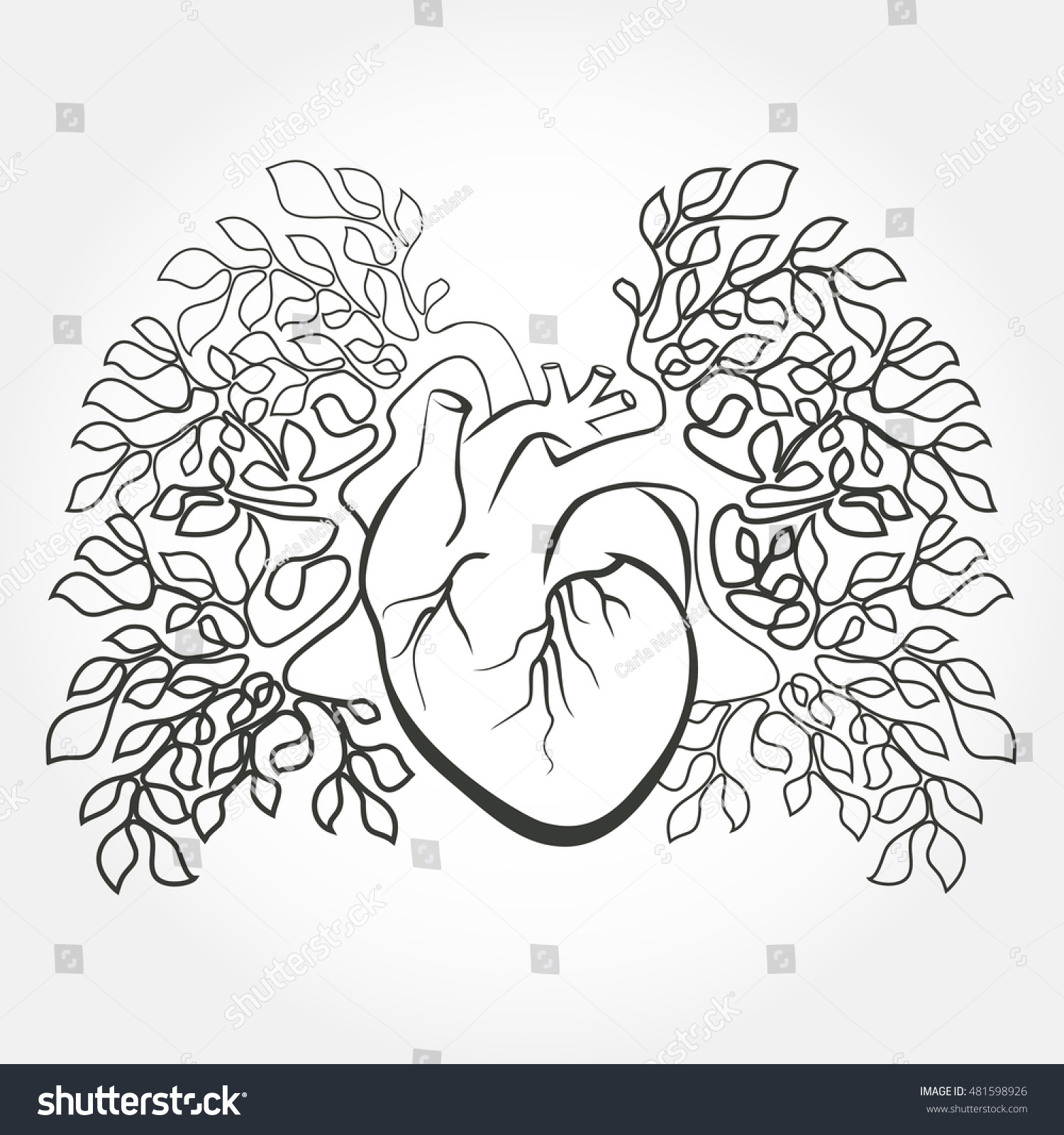 Human Heart Lungs Like Tree Branch Stock Vector (Royalty Free ...