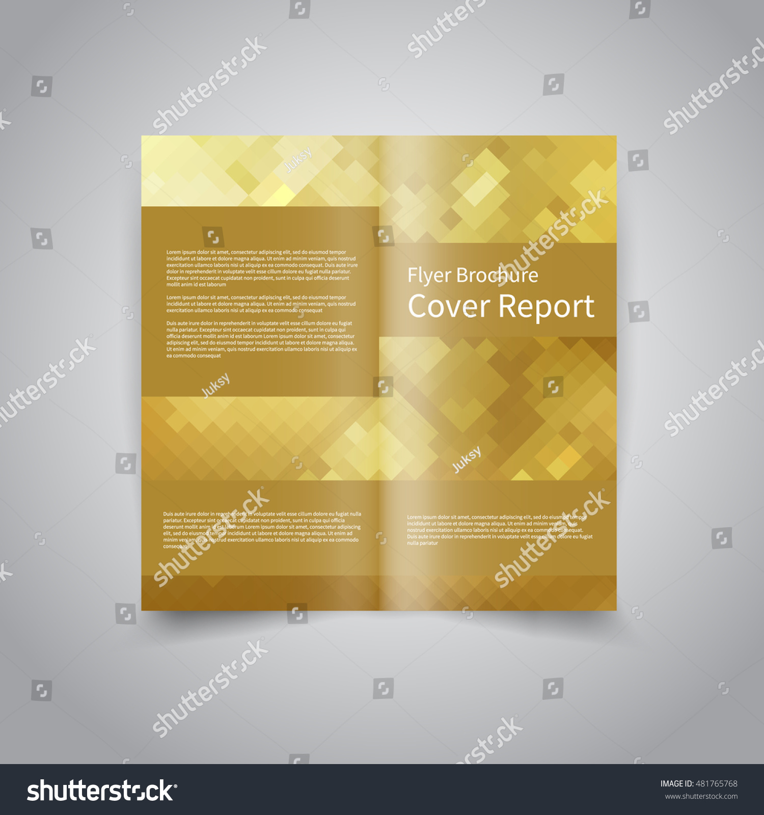 Vector Twofold Brochure Design Template Abstract Stock Photo (Photo ...