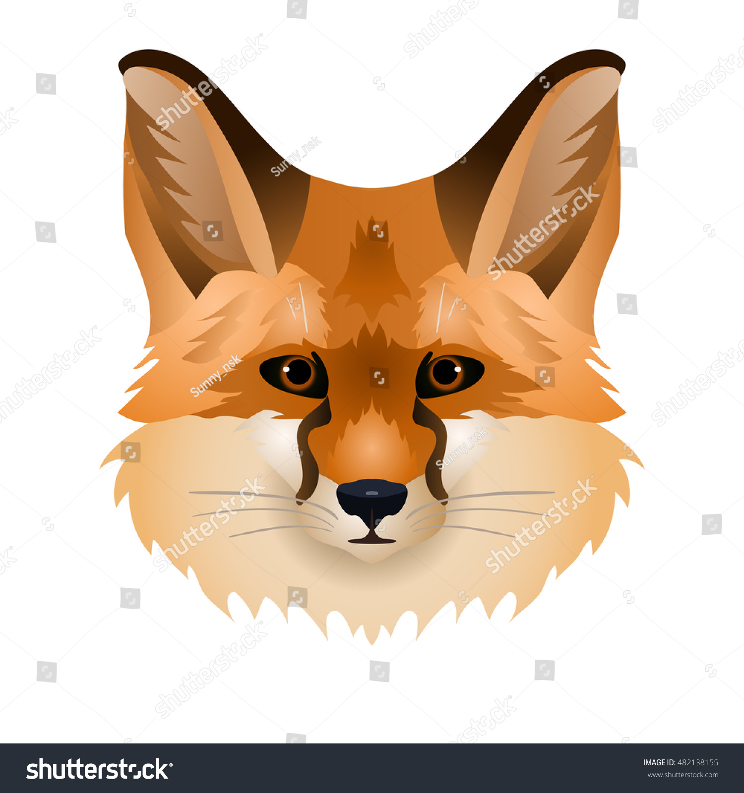 vector beautiful red fox face wild stock vector 482138155