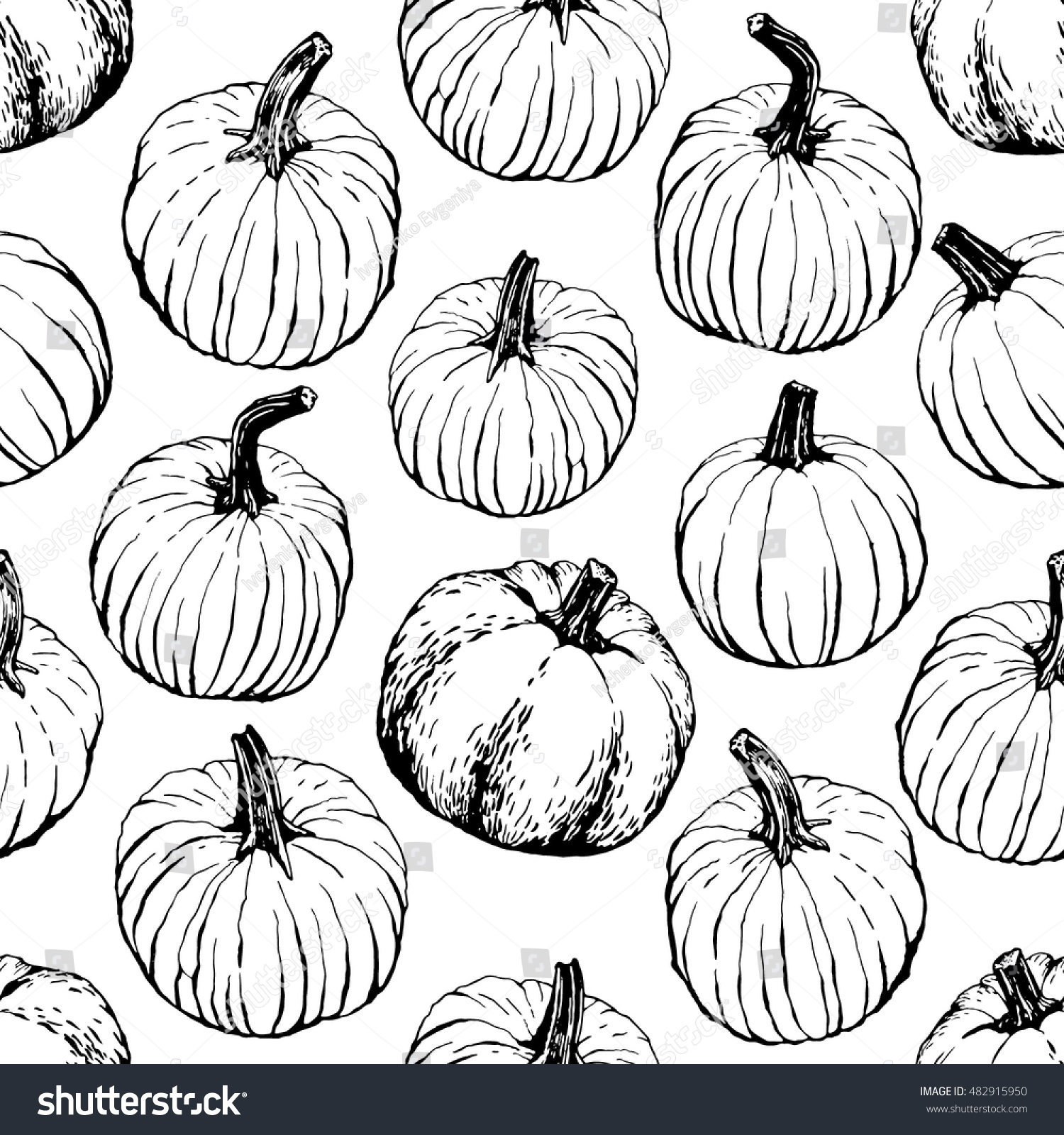 Pumpkin Pattern Including Seamless On White Stock Vector (Royalty ...