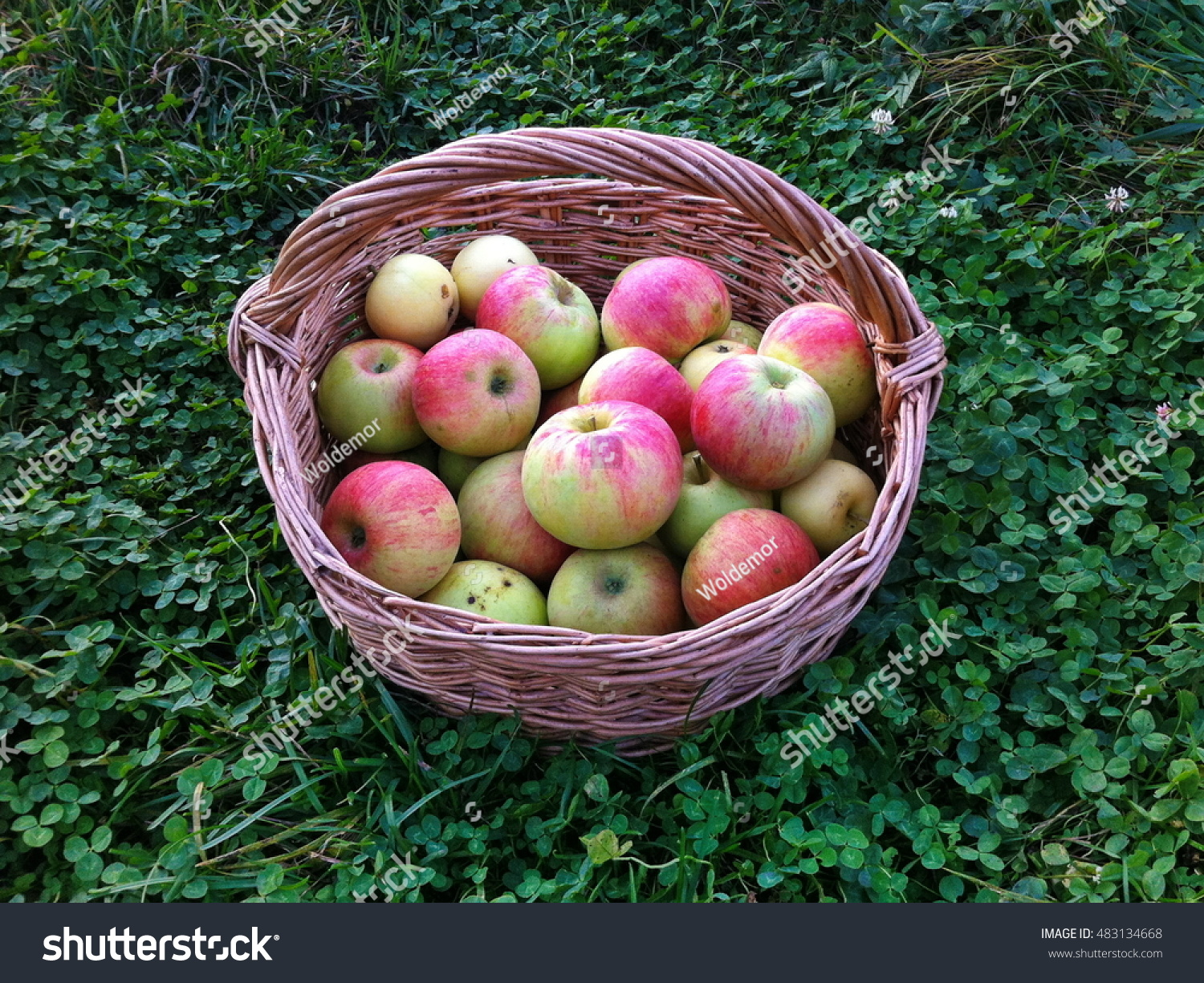 green and red apples in basket. red apples in a basket green and l
