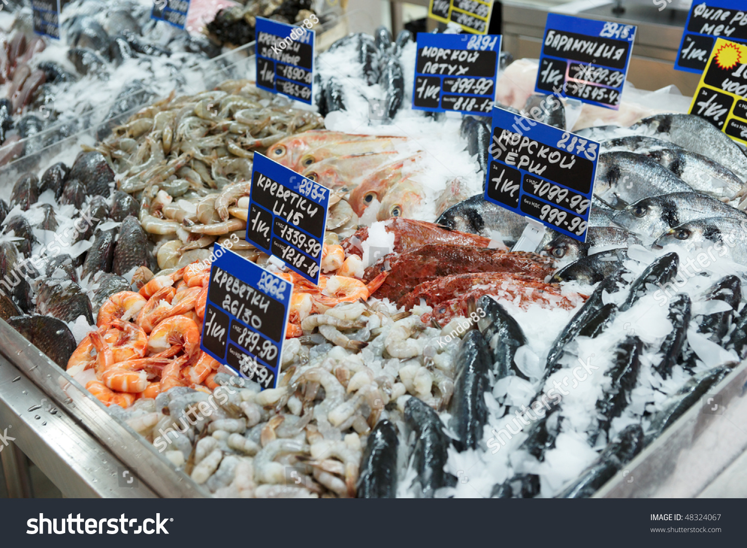 Variety of fish and seafood on cooled market display tms for Seafood fish market