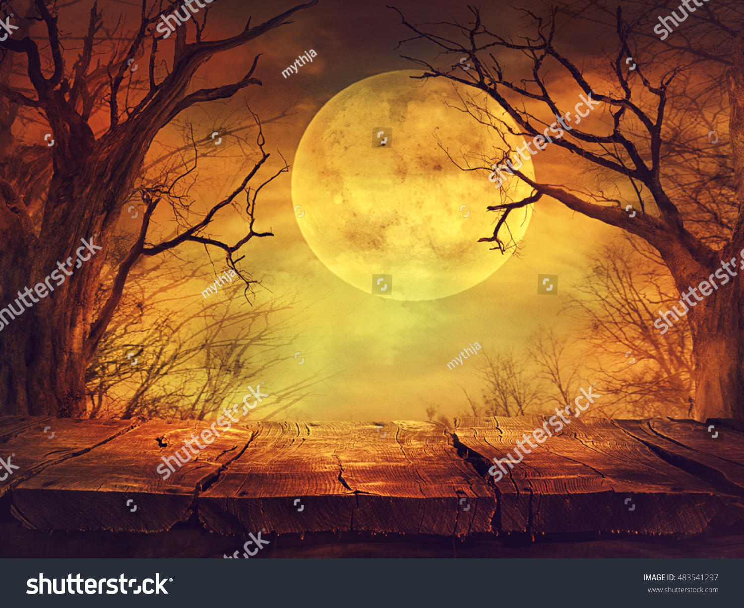 Halloween background. Spooky forest with full moon and wooden table #483541297