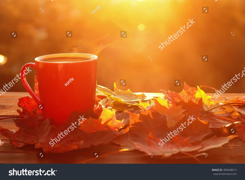 Tea Background Stock Photography - Image: 34539072
