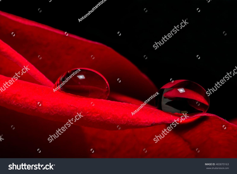 Scarlet Rose Nude Photos 2