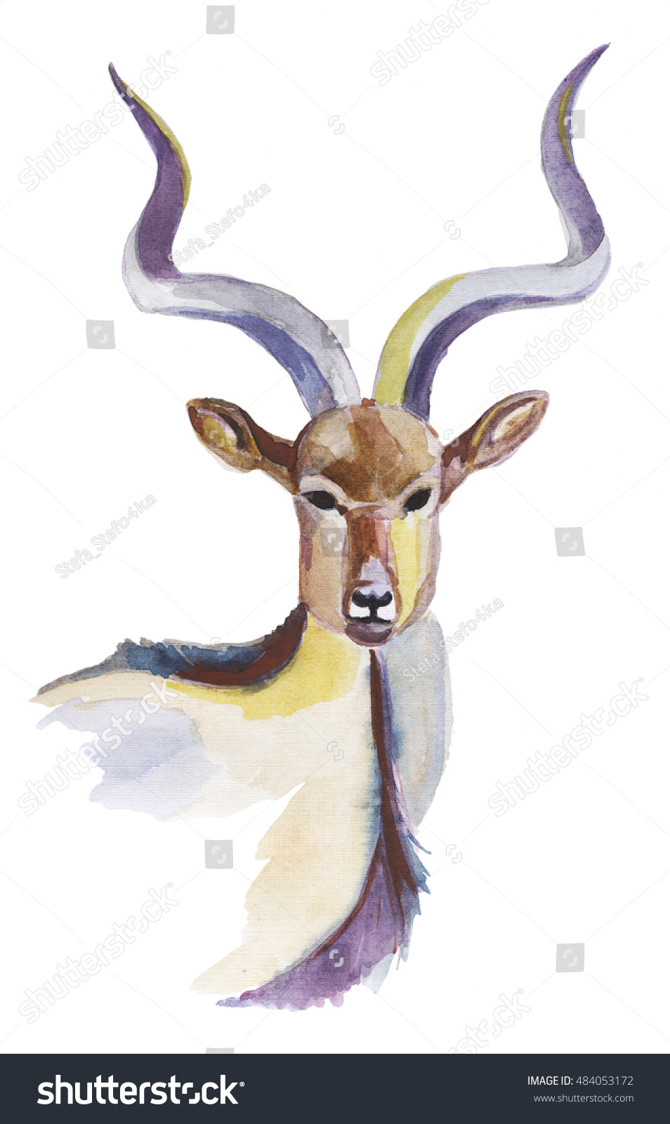 Watercolor Illustration Greater Kudu Animal Wild Stock Illustration  484053172   Shutterstock