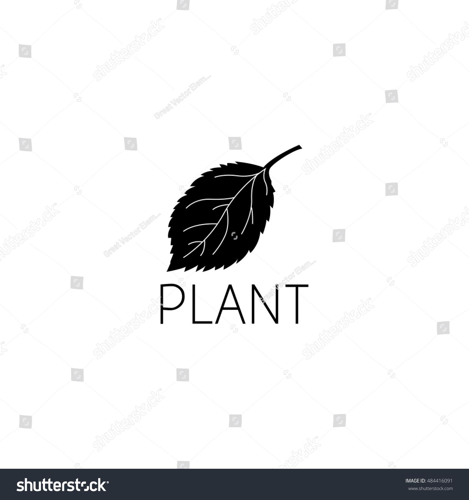 Leaf Logo Graphic Design Concept Editable Stock Vector 484416091 ...