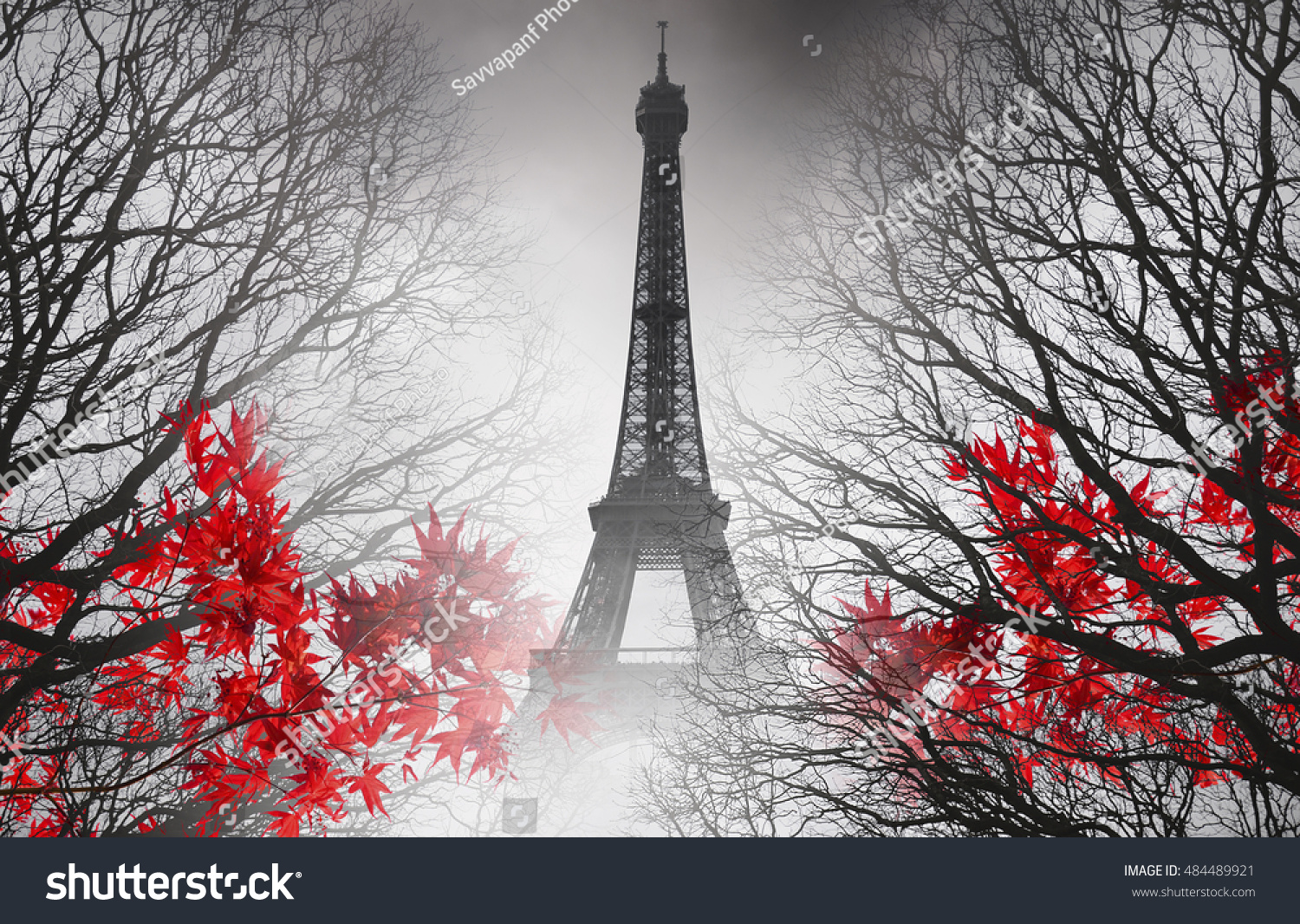 Eiffel Tower in Paris autumn picture