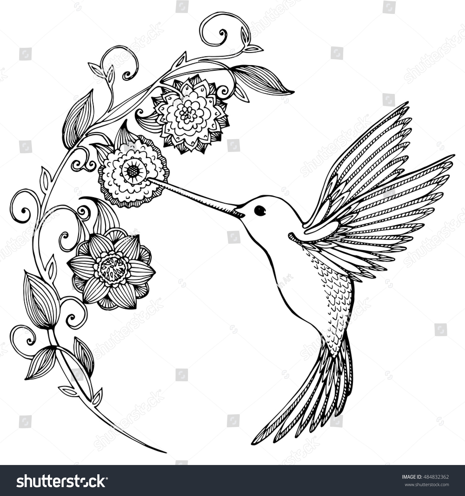flying hummingbird hummingbird flowers stylized bird stock vector