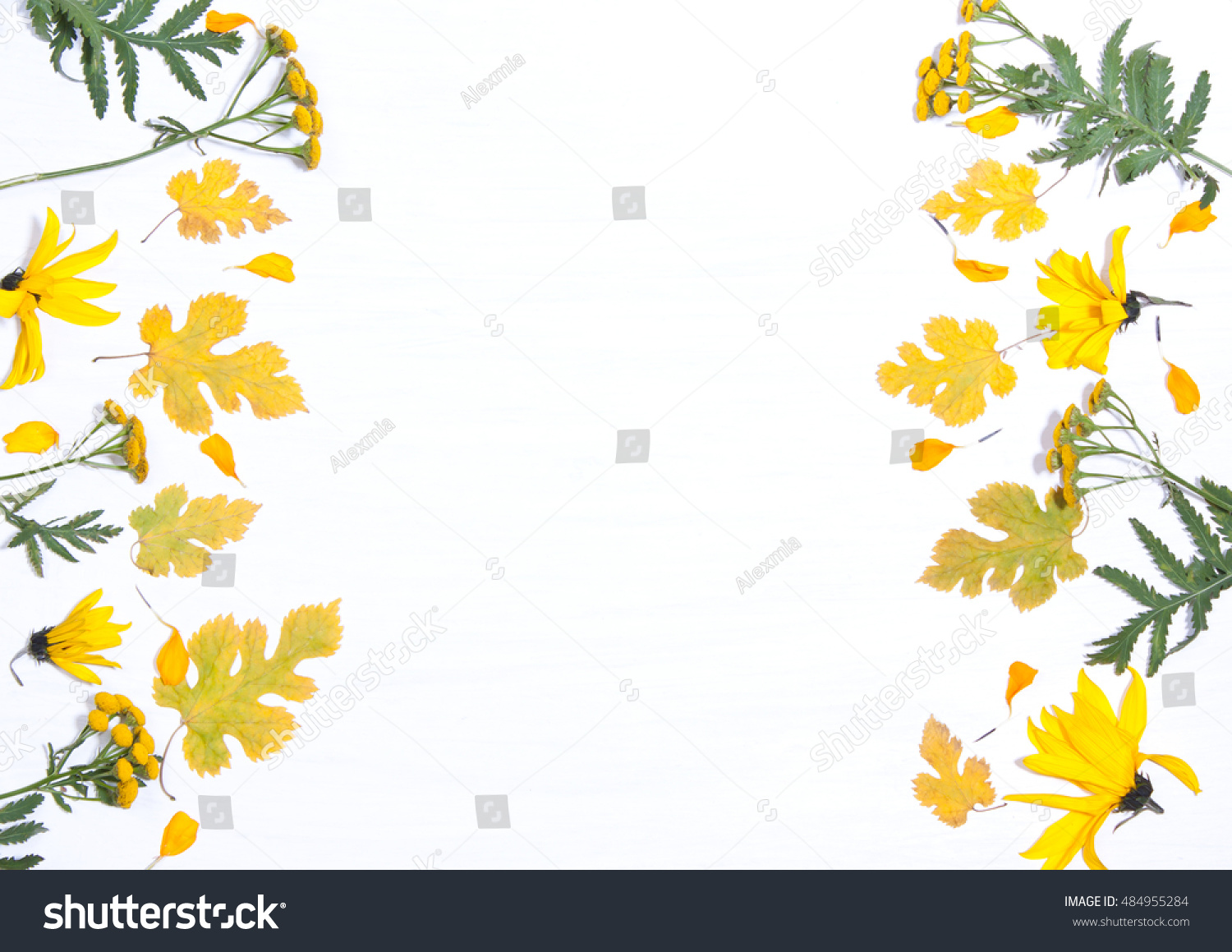 Frame On The Background Of Yellow Flowers And Leavesncept Autumn