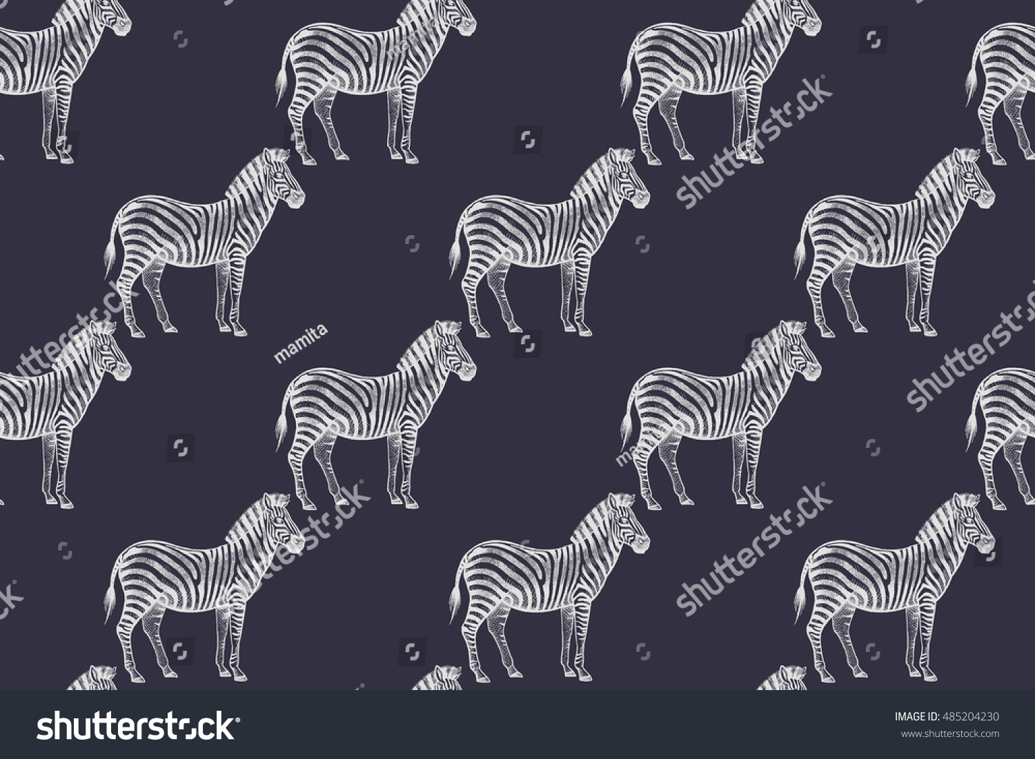 Vector Line Art Animals : Set of vector illustrations with zebra isolated objects on white