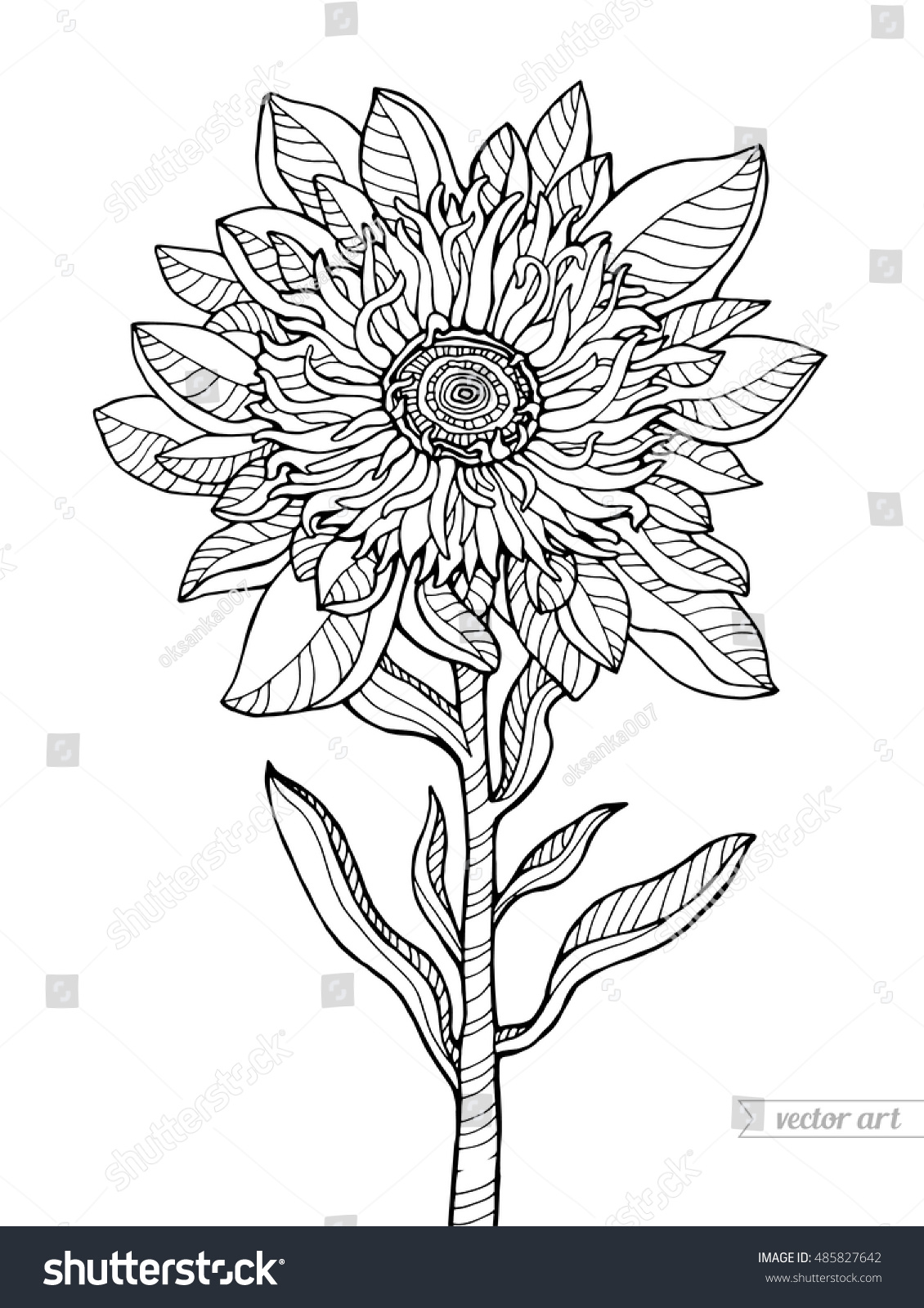 Wonderful Flower Vector Illustration Coloring Book Page For Adult Black And White Line