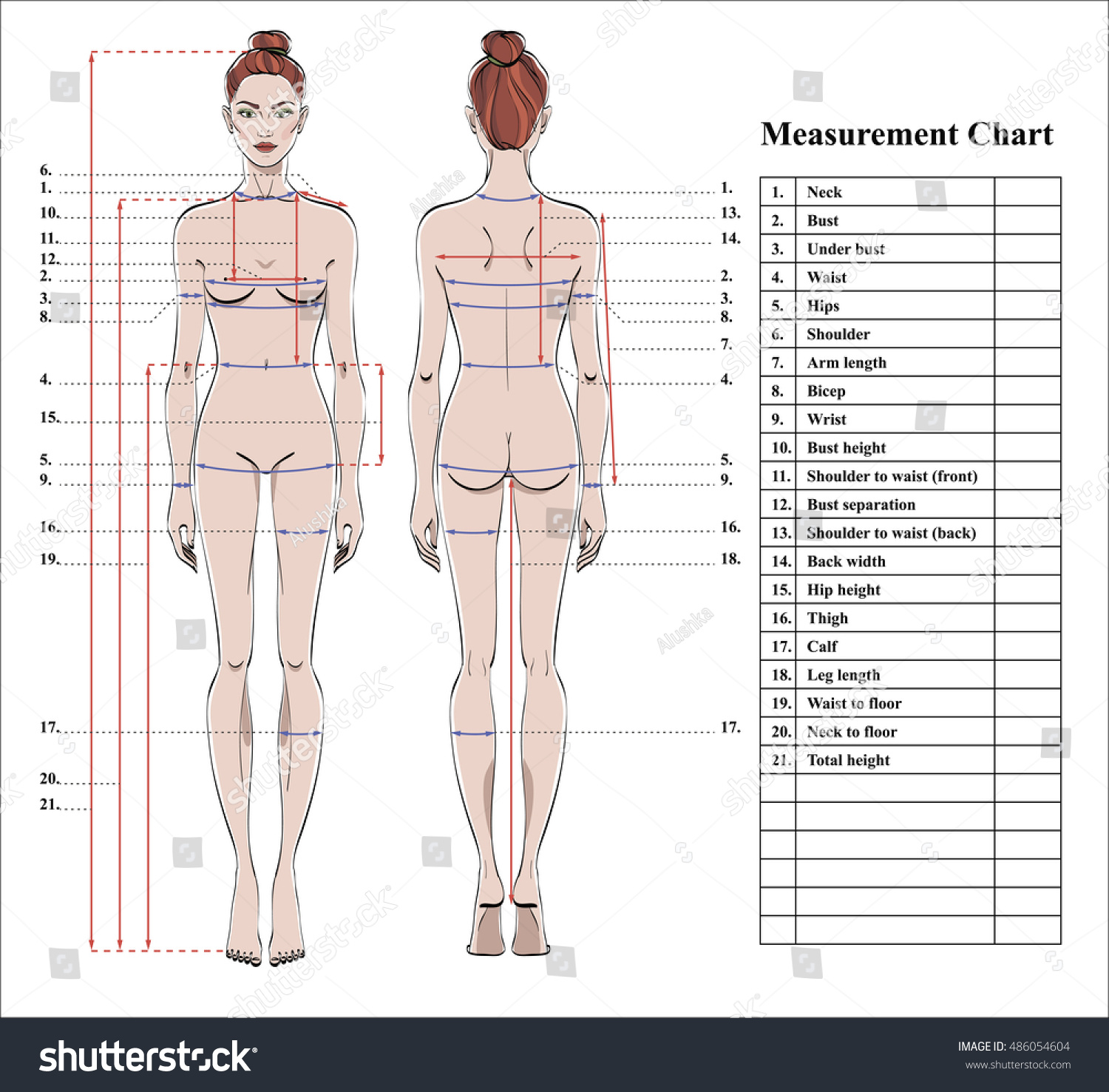 3165f103d Woman body measurement chart. Scheme for measurement human body for sewing  clothes. Female figure  front and back views. Template for dieting