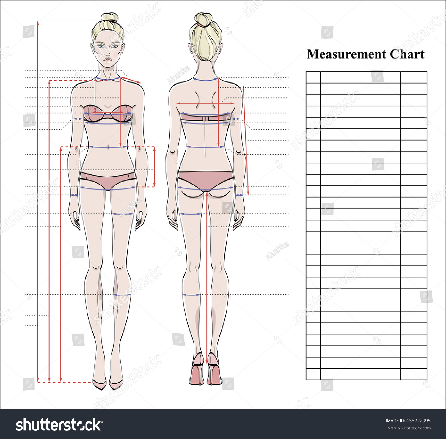 Royalty-free Woman body measurement chart. Scheme… #486272995 Stock ...