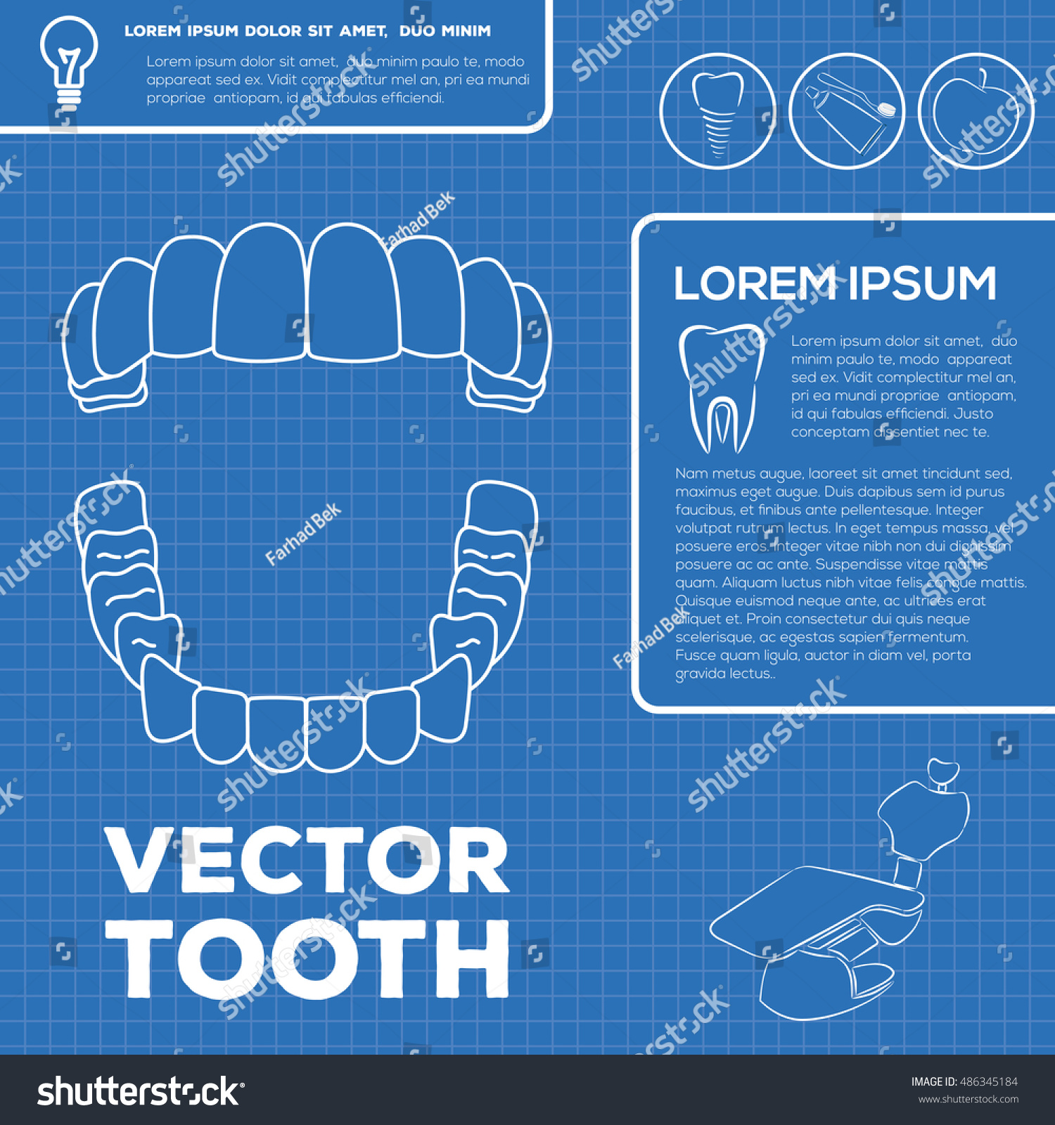 Teeth Infographic Template Blueprint Style Vector