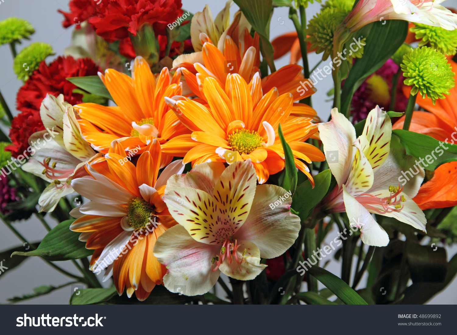 Colorful Spring Bouquet Variety Flowers Stock Photo Edit Now