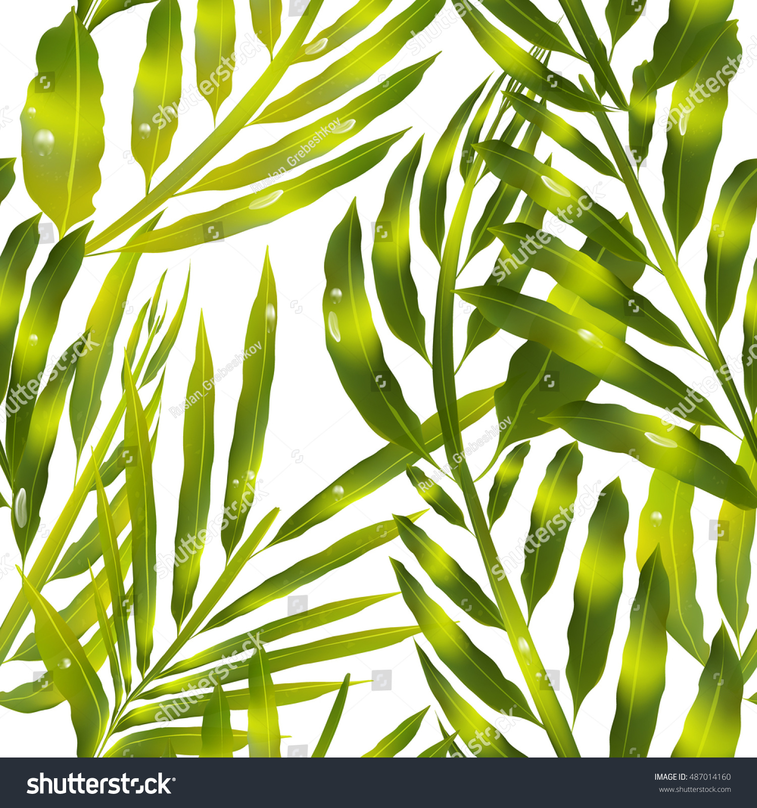 leaf pattern vector palm tree leaves stock vector 487014160