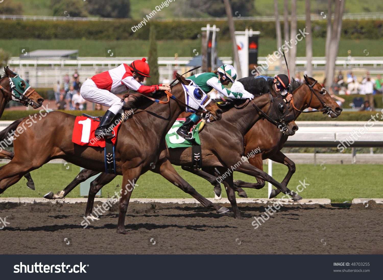 Arcadia Ca Mar 13 Jockey Michael Stock Photo 48703255