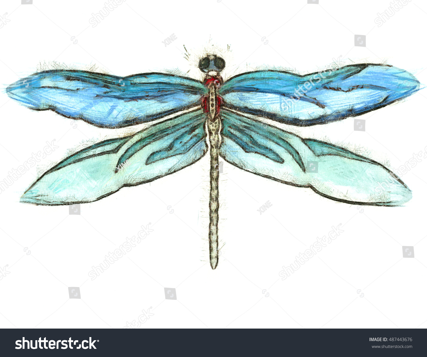 dragonfly color sketches graphic art stock illustration 487443676